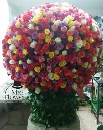 1000-Rosas
