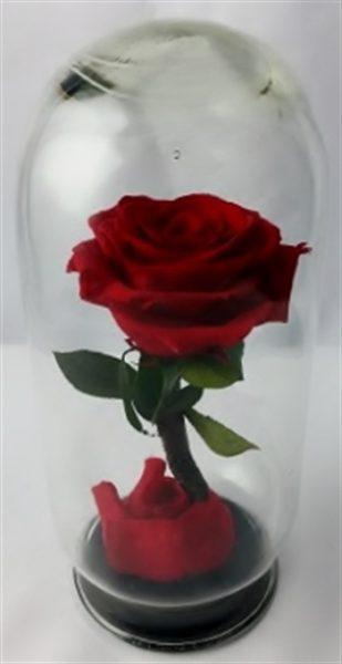 Rosa en Cristal Cerámica